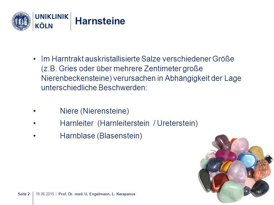 Harnsteine