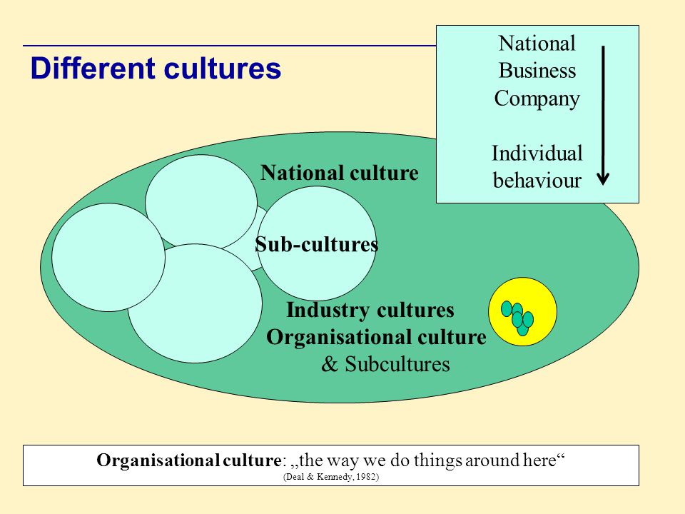Different cultures National Business Company Individual behaviour
