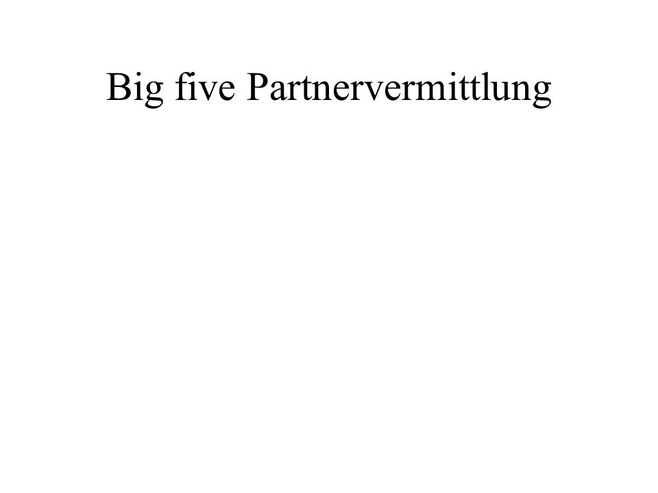 Big five Partnervermittlung