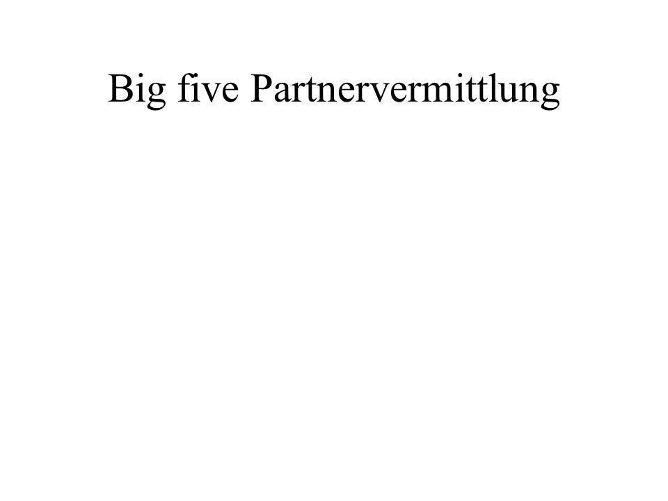 Big five Partnervermittlung