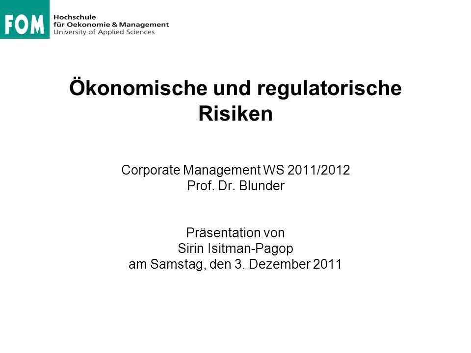 Ökonomische und regulatorische Risiken