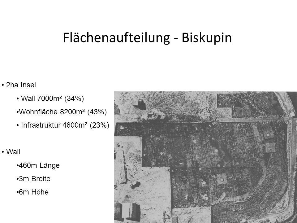 Flächenaufteilung - Biskupin