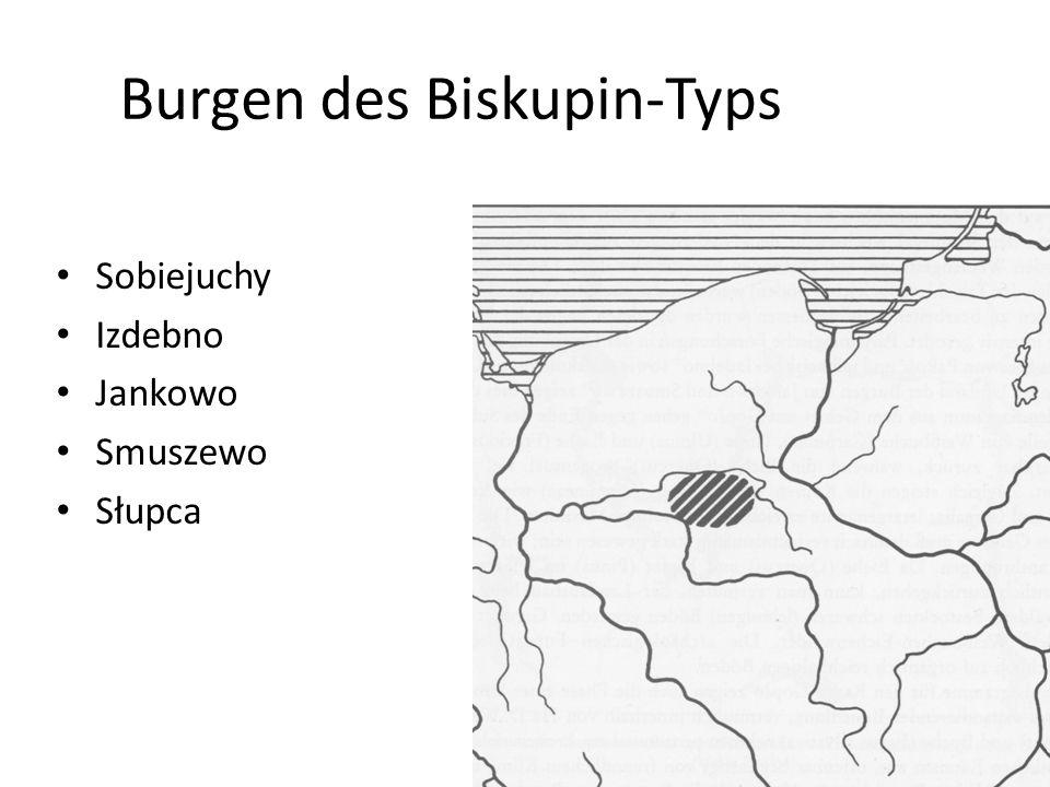 Burgen des Biskupin-Typs