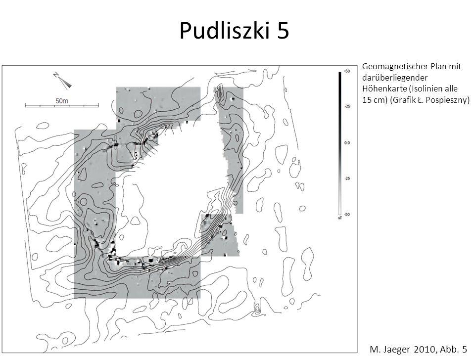 Pudliszki 5 Geomagnetischer Plan mit darüberliegender Höhenkarte (Isolinien alle. 15 cm) (Grafik Ł. Pospieszny)