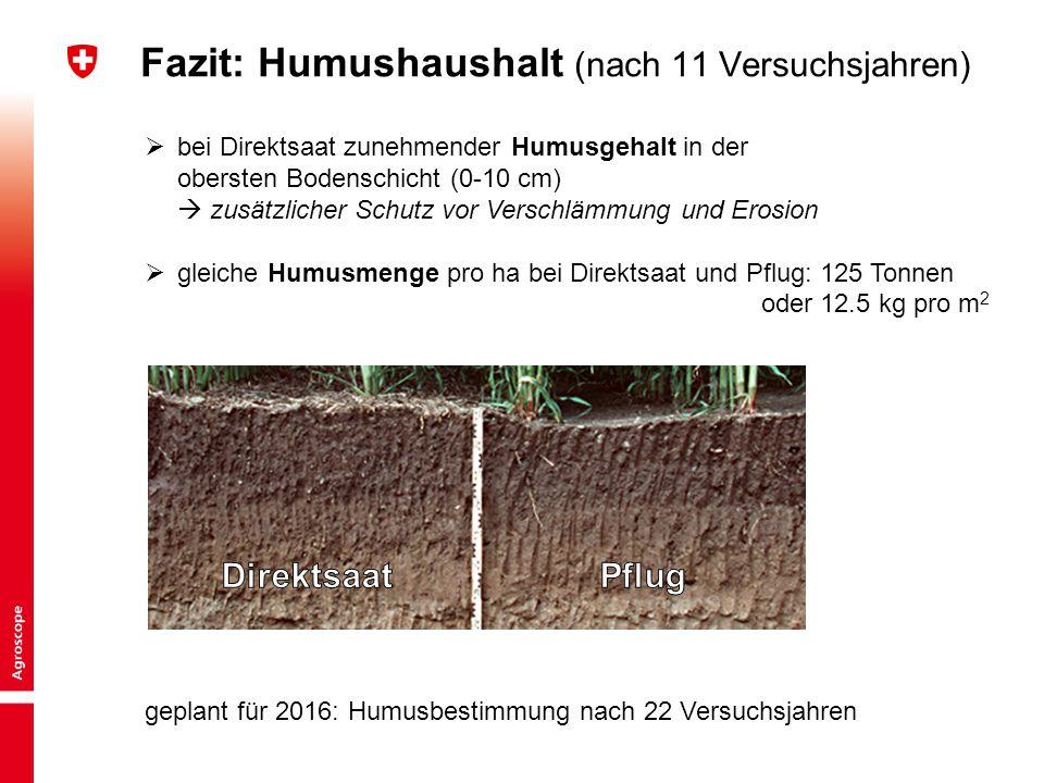 Fazit: Humushaushalt (nach 11 Versuchsjahren)