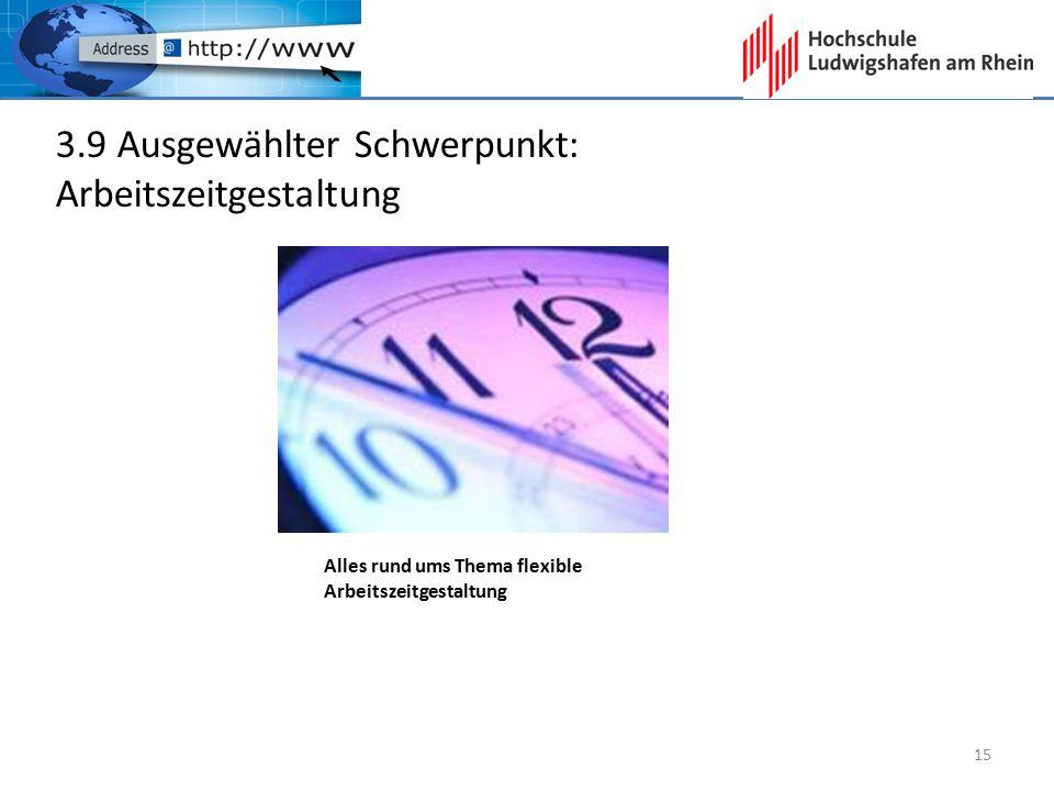3.9 Ausgewählter Schwerpunkt: Arbeitszeitgestaltung