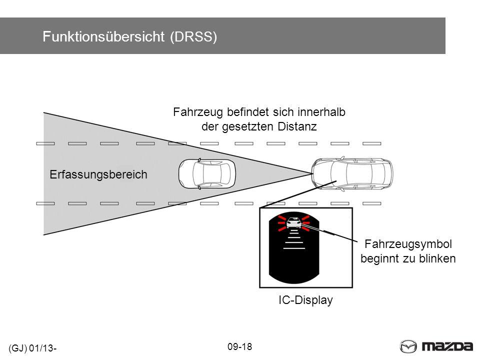 Funktionsübersicht (DRSS)