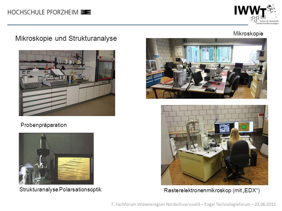 Mikroskopie und Strukturanalyse
