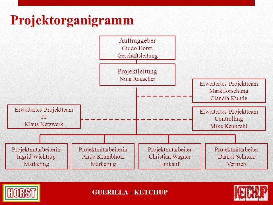 Projektorganigramm Auftraggeber Projektleitung