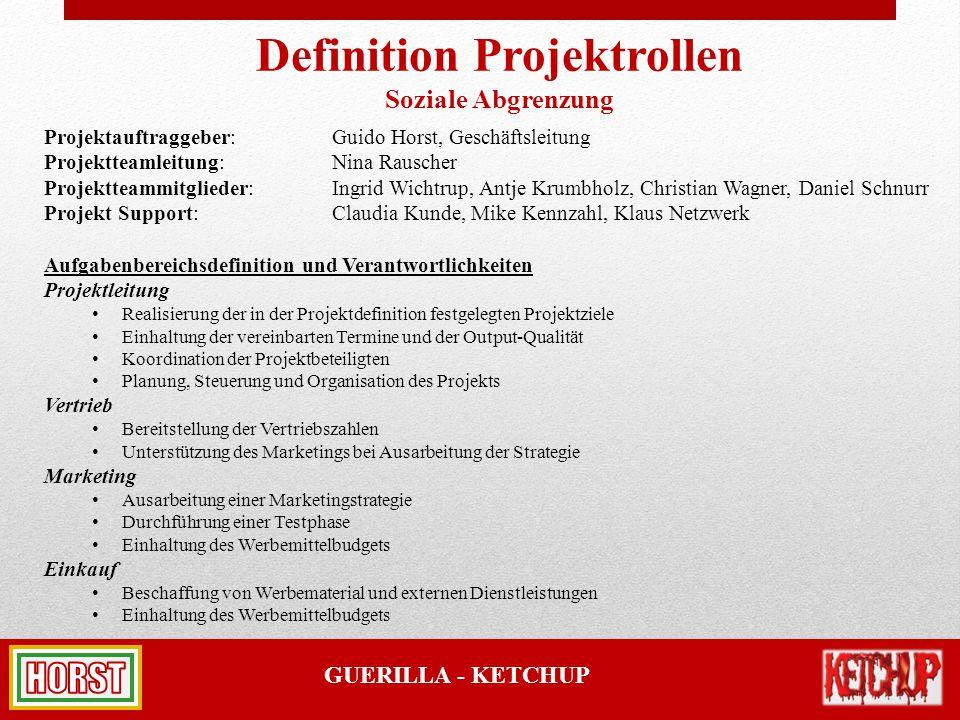 Definition Projektrollen