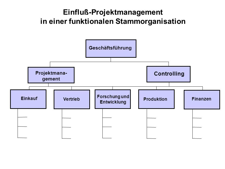 Einfluß-Projektmanagement in einer funktionalen Stammorganisation
