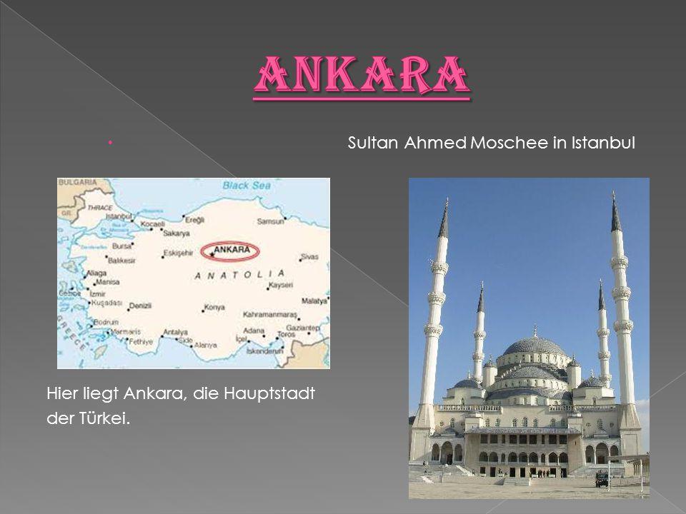 Ankara Sultan Ahmed Moschee in Istanbul