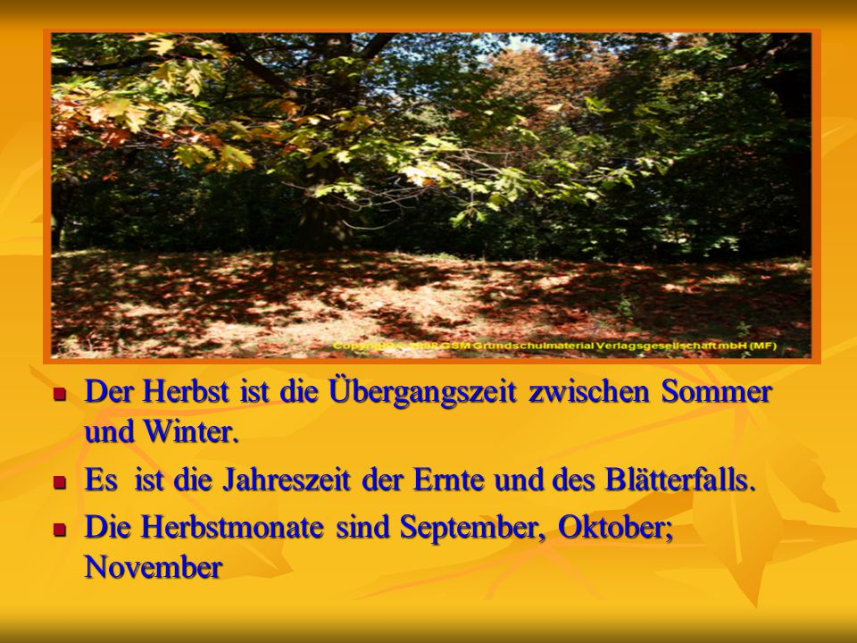 Der Herbst ist die Übergangszeit zwischen Sommer und Winter.