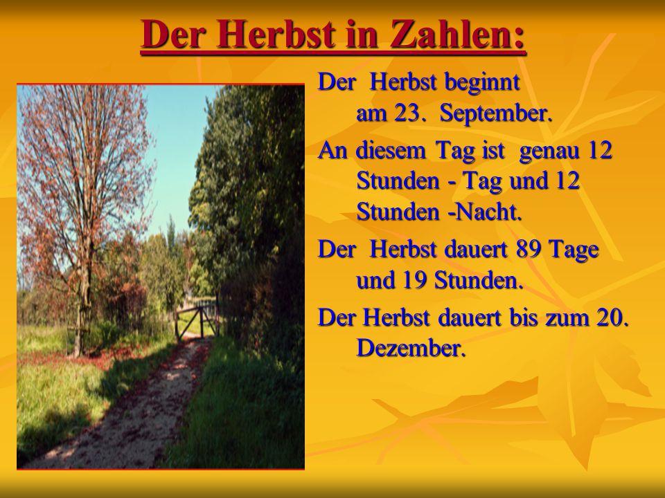 Der Herbst in Zahlen: Der Herbst beginnt am 23. September.