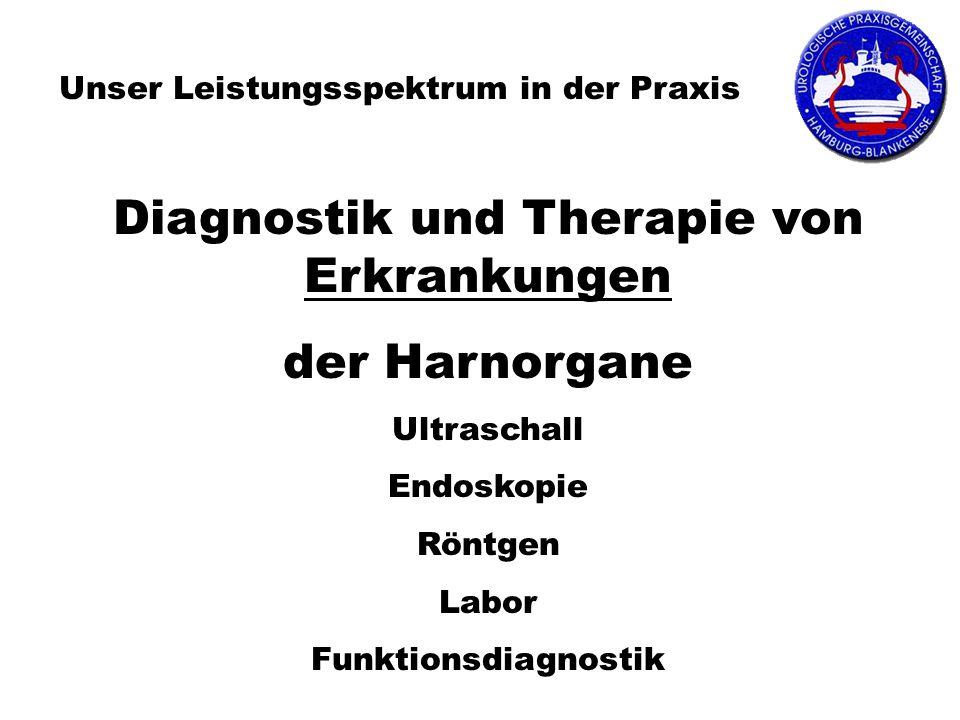 Diagnostik und Therapie von Erkrankungen der Harnorgane