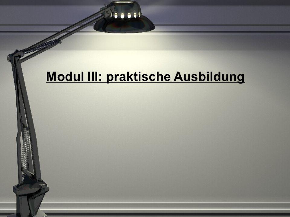 Modul III: praktische Ausbildung