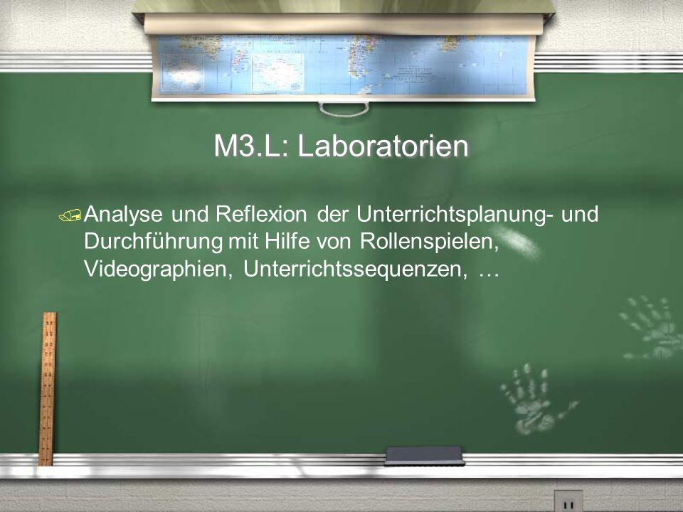 M3.L: Laboratorien Analyse und Reflexion der Unterrichtsplanung- und Durchführung mit Hilfe von Rollenspielen, Videographien, Unterrichtssequenzen, …