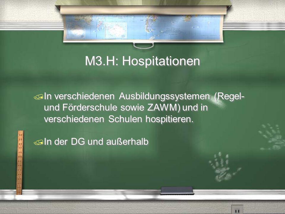 M3.H: Hospitationen In verschiedenen Ausbildungssystemen (Regel- und Förderschule sowie ZAWM) und in verschiedenen Schulen hospitieren.