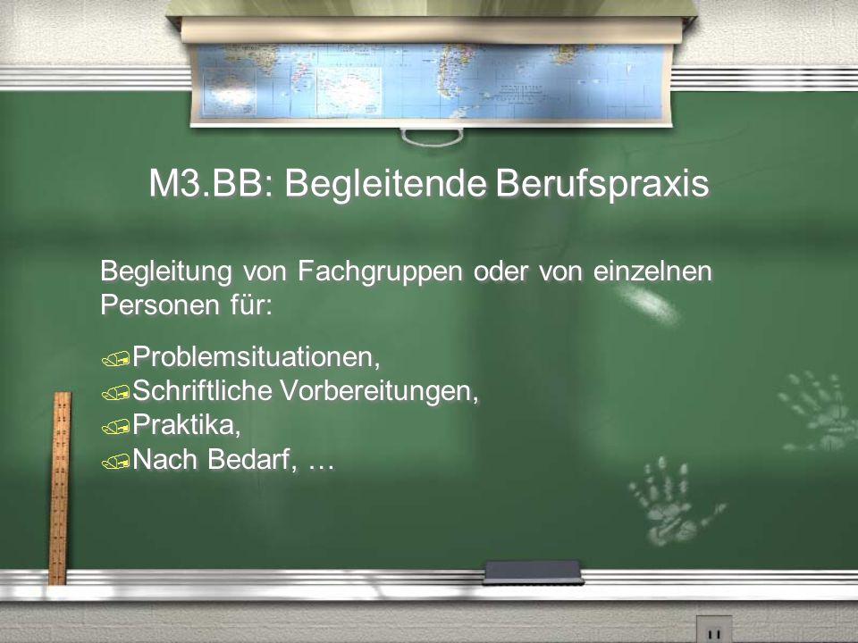 M3.BB: Begleitende Berufspraxis