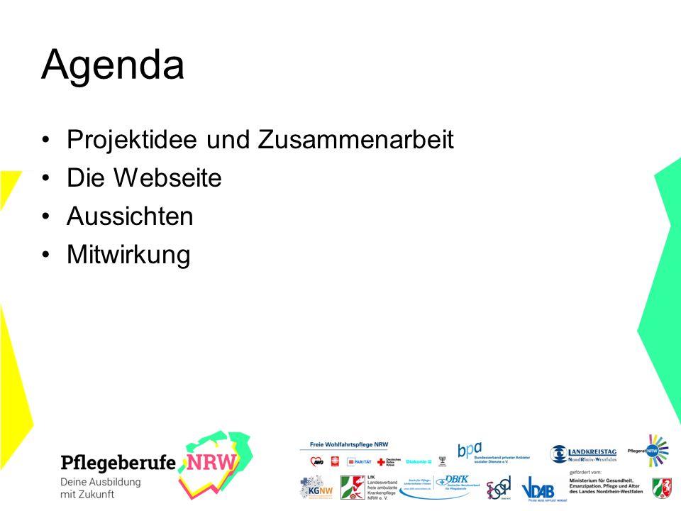Agenda Projektidee und Zusammenarbeit Die Webseite Aussichten