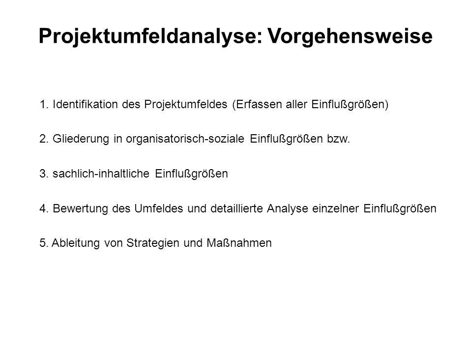 Projektumfeldanalyse: Vorgehensweise