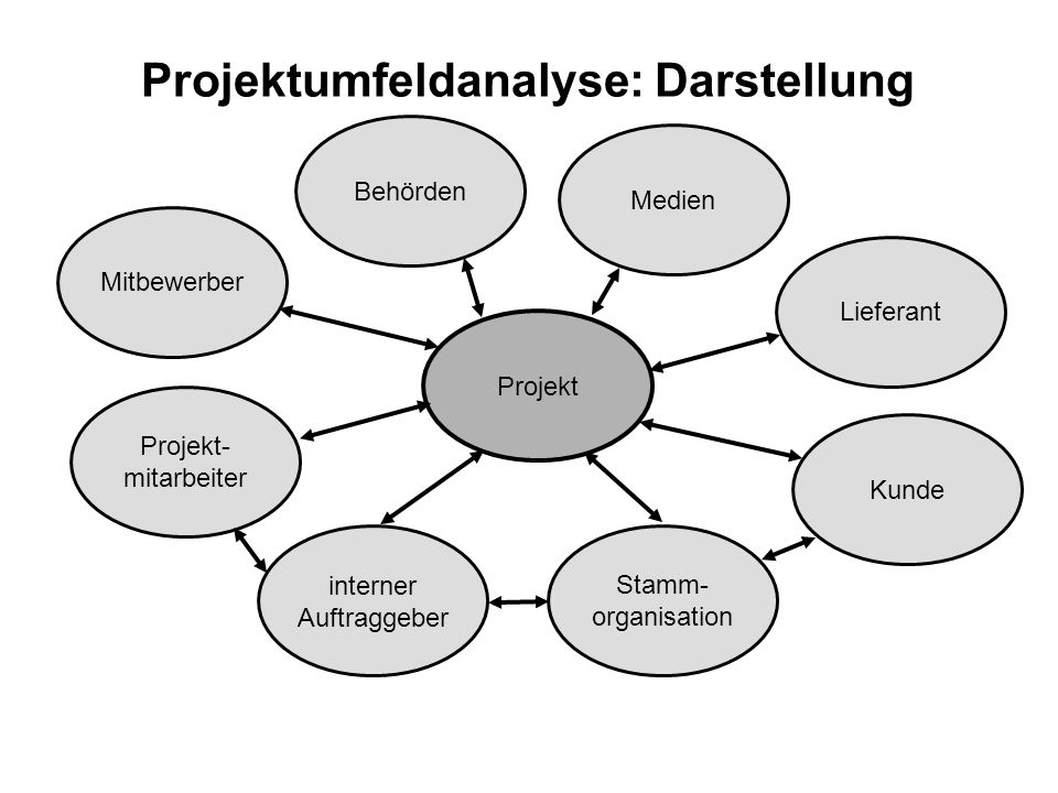 Projektumfeldanalyse: Darstellung