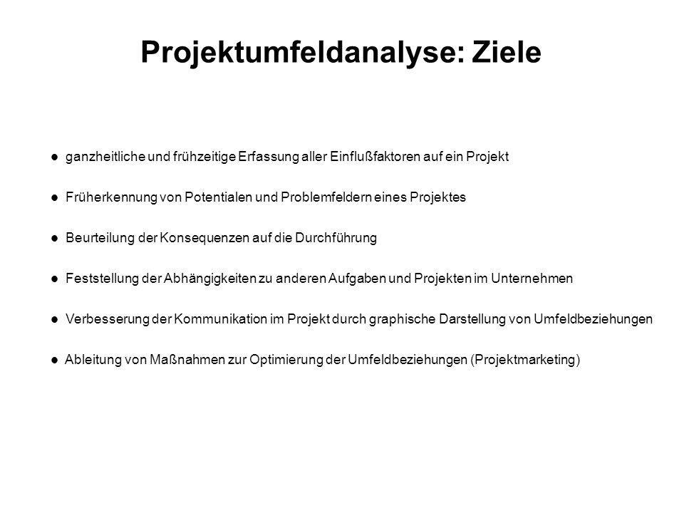 Projektumfeldanalyse: Ziele