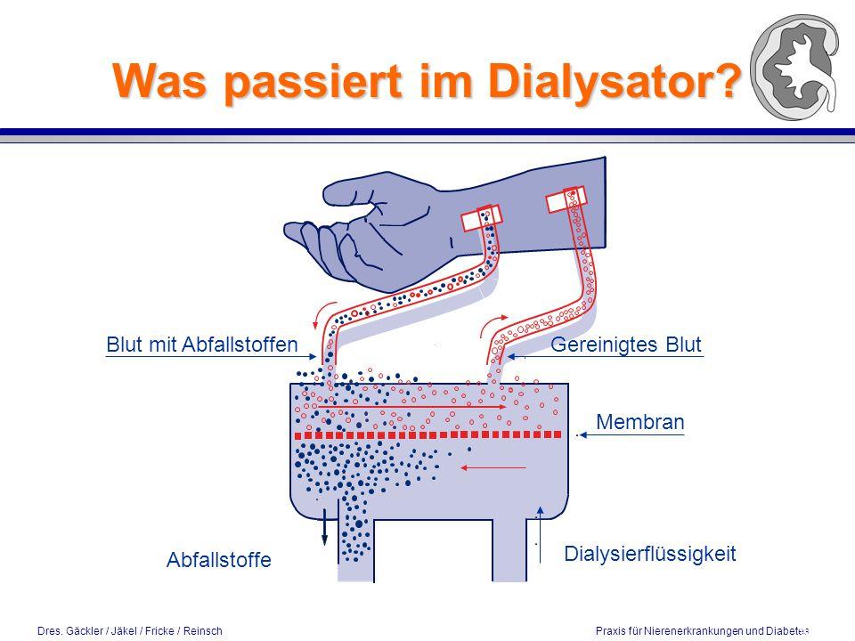 Was passiert im Dialysator