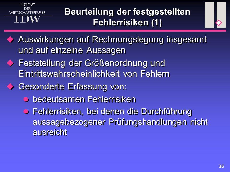 Beurteilung der festgestellten Fehlerrisiken (1)
