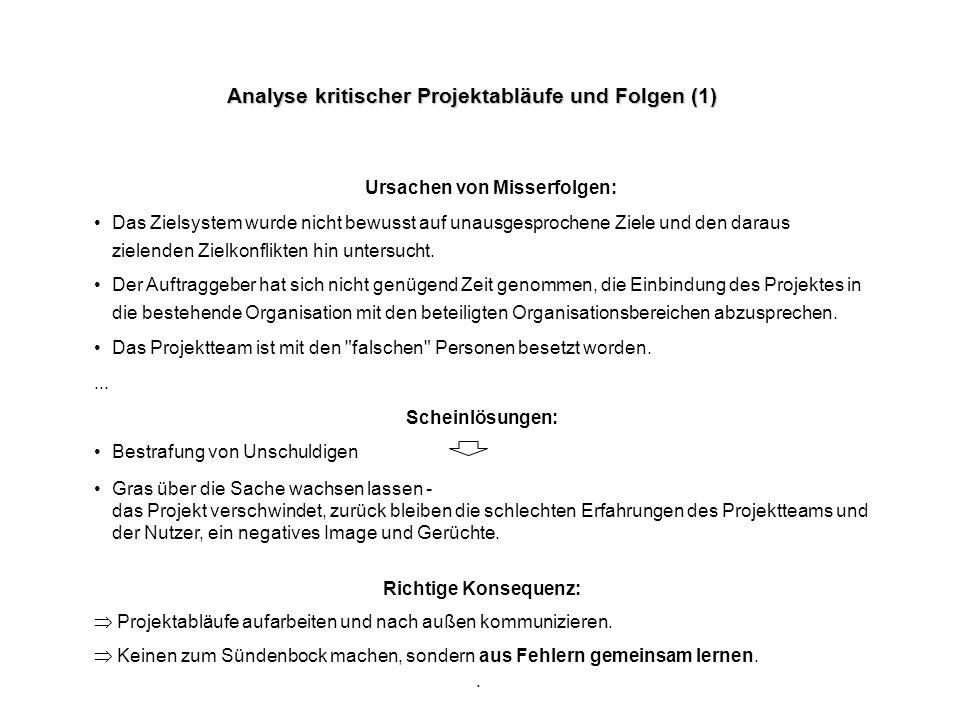 Analyse kritischer Projektabläufe und Folgen (1)
