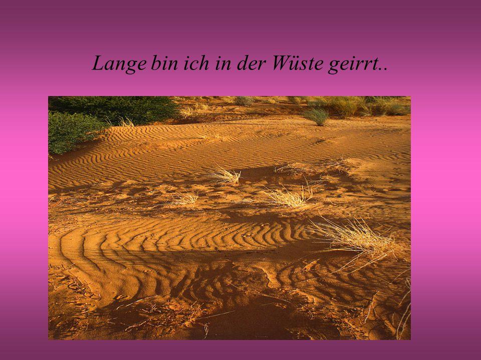 Lange bin ich in der Wüste geirrt..