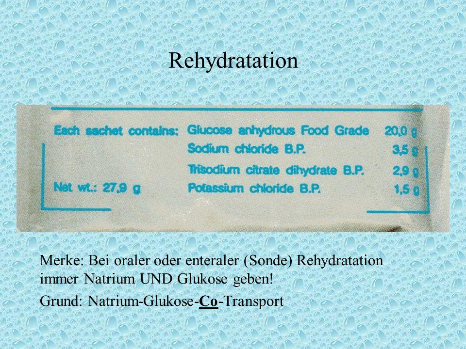 Rehydratation Merke: Bei oraler oder enteraler (Sonde) Rehydratation immer Natrium UND Glukose geben!