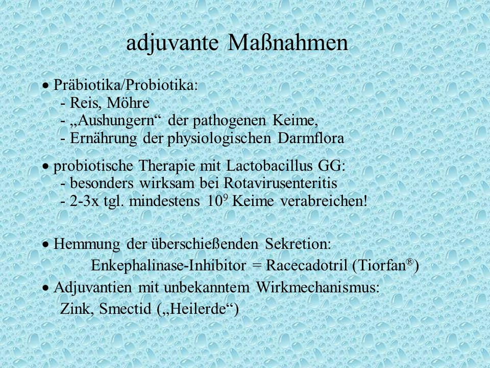 adjuvante Maßnahmen  Präbiotika/Probiotika: - Reis, Möhre