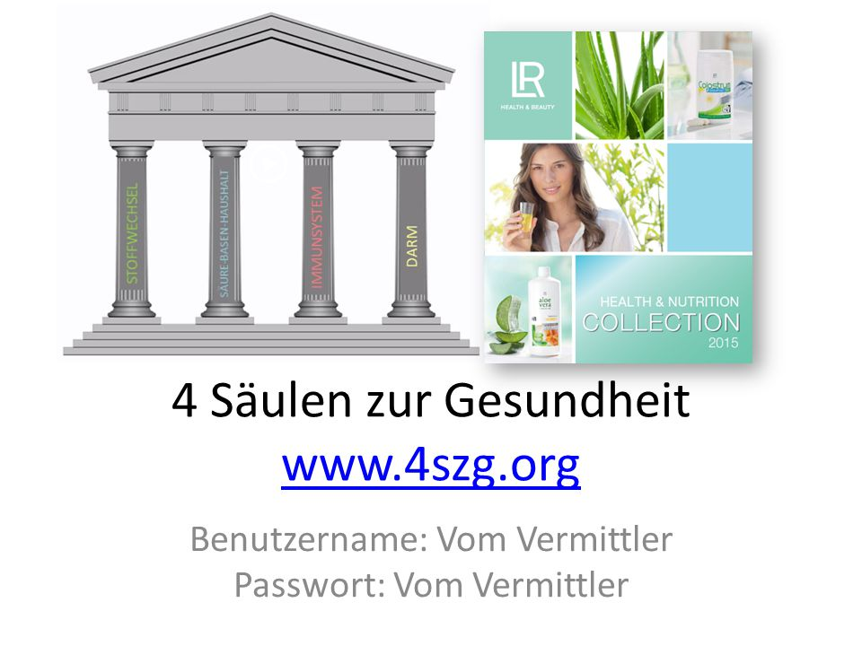 4 Säulen zur Gesundheit www.4szg.org