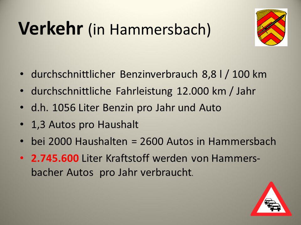Verkehr (in Hammersbach)