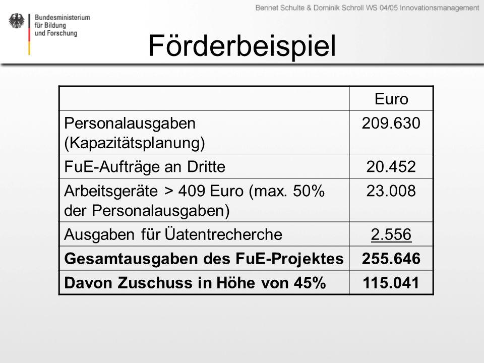 Förderbeispiel Euro Personalausgaben (Kapazitätsplanung) 209.630