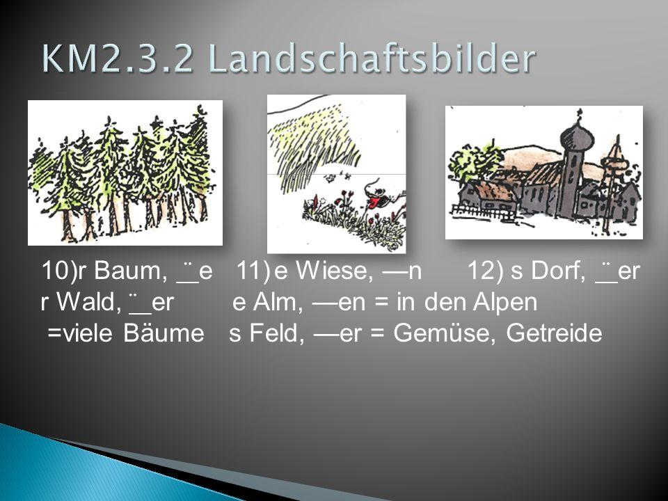 KM2.3.2 Landschaftsbilder 10)r Baum, ¨ e 11) e Wiese, —n 12) s Dorf, ¨ er. r Wald, ¨ er e Alm, —en = in den Alpen.