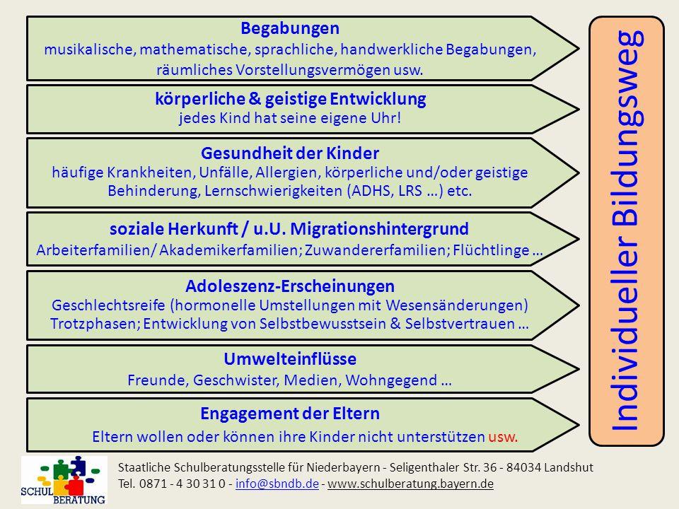 Individueller Bildungsweg