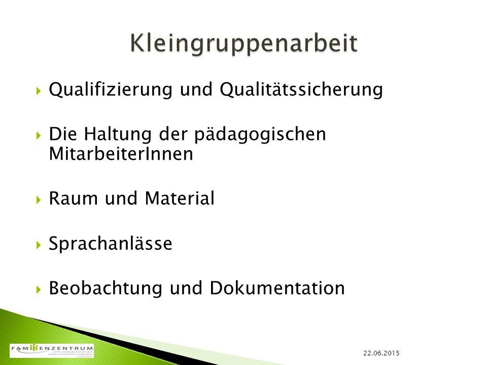 Kleingruppenarbeit Qualifizierung und Qualitätssicherung