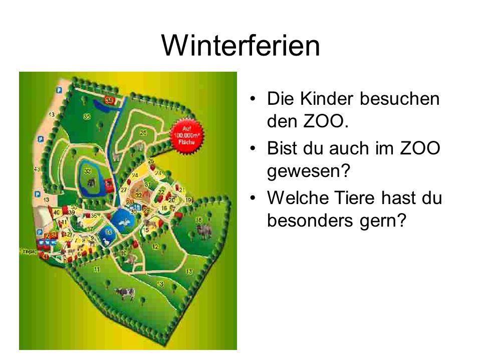 Winterferien Die Kinder besuchen den ZOO. Bist du auch im ZOO gewesen