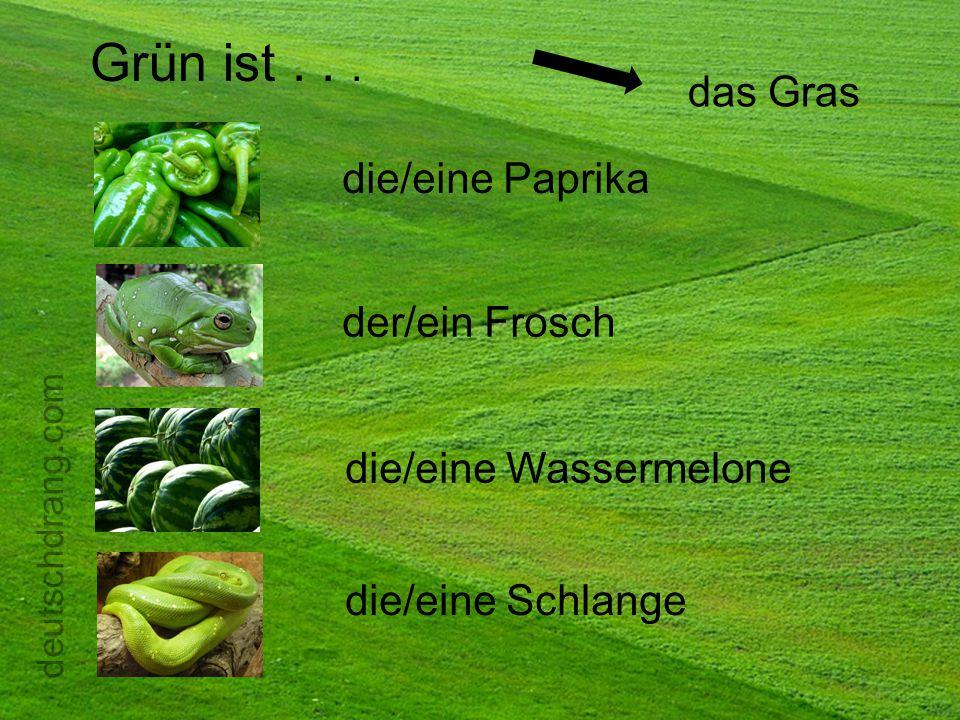 Grün ist . . . das Gras die/eine Paprika der/ein Frosch