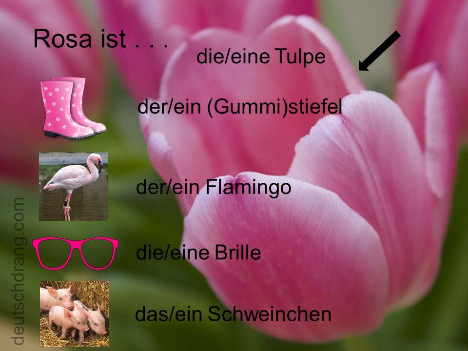 Rosa ist . . . die/eine Tulpe der/ein (Gummi)stiefel der/ein Flamingo