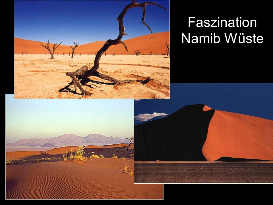 Faszination Namib Wüste