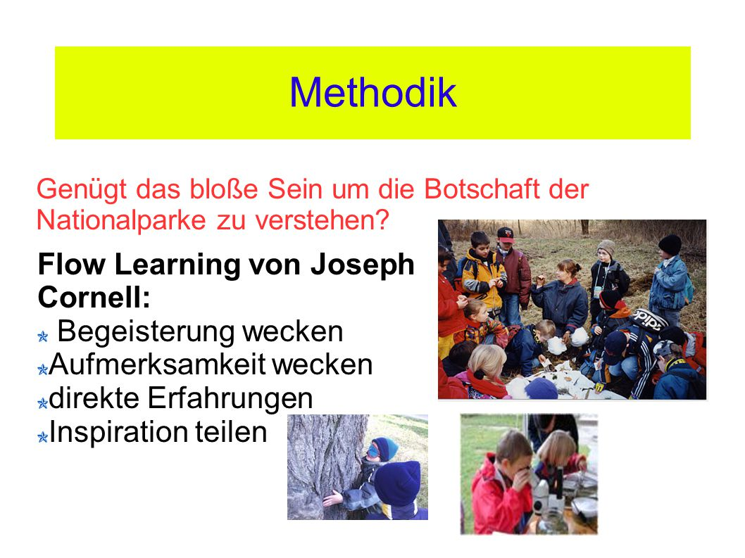 Methodik Flow Learning von Joseph Cornell: Begeisterung wecken