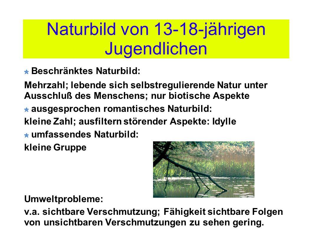 Naturbild von 13-18-jährigen Jugendlichen