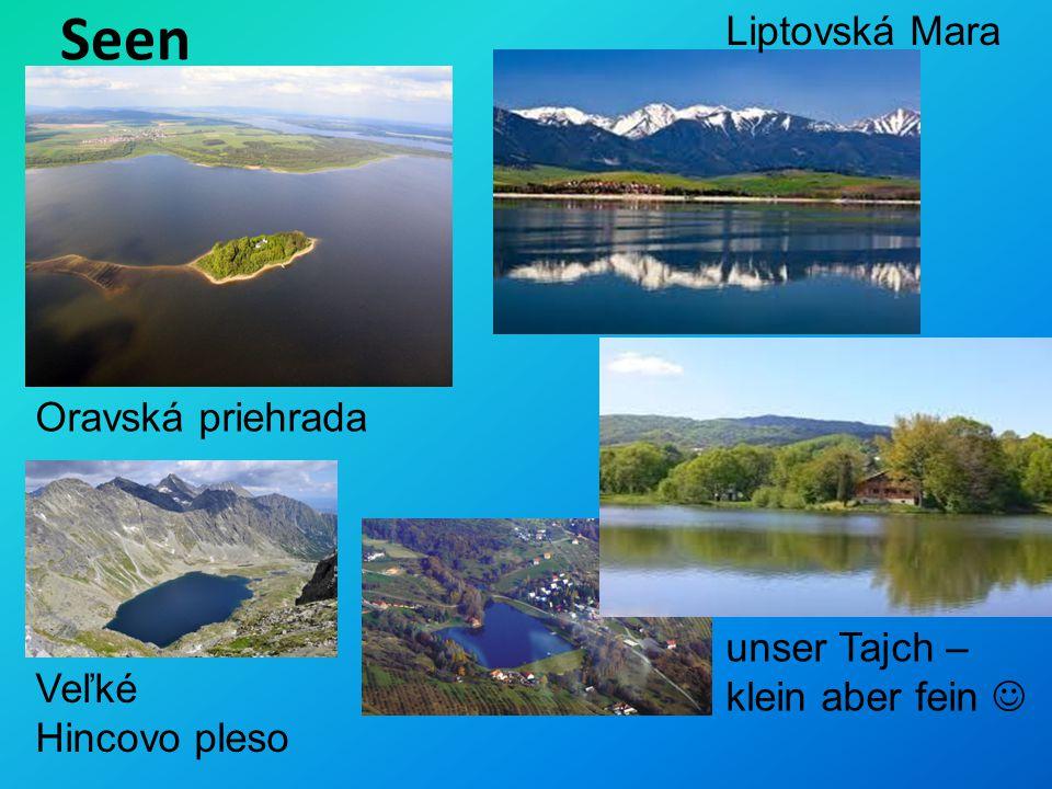 Seen Liptovská Mara Oravská priehrada unser Tajch – klein aber fein 