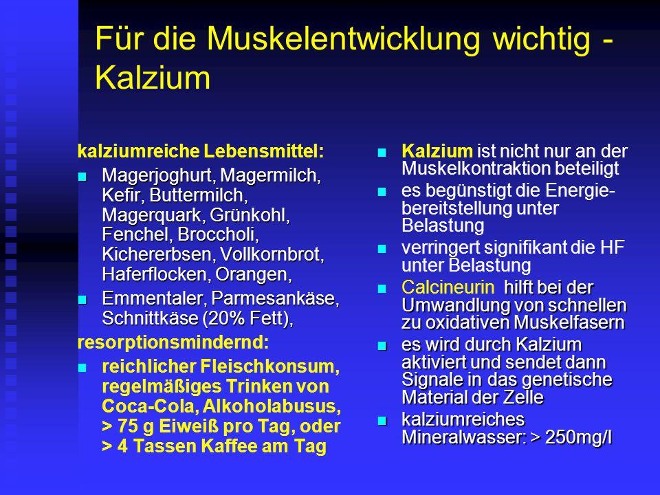 Für die Muskelentwicklung wichtig - Kalzium