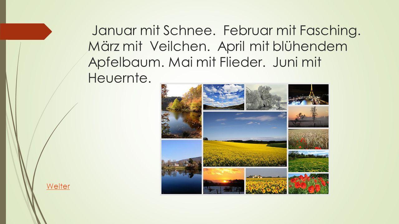 Januar mit Schnee. Februar mit Fasching. März mit Veilchen