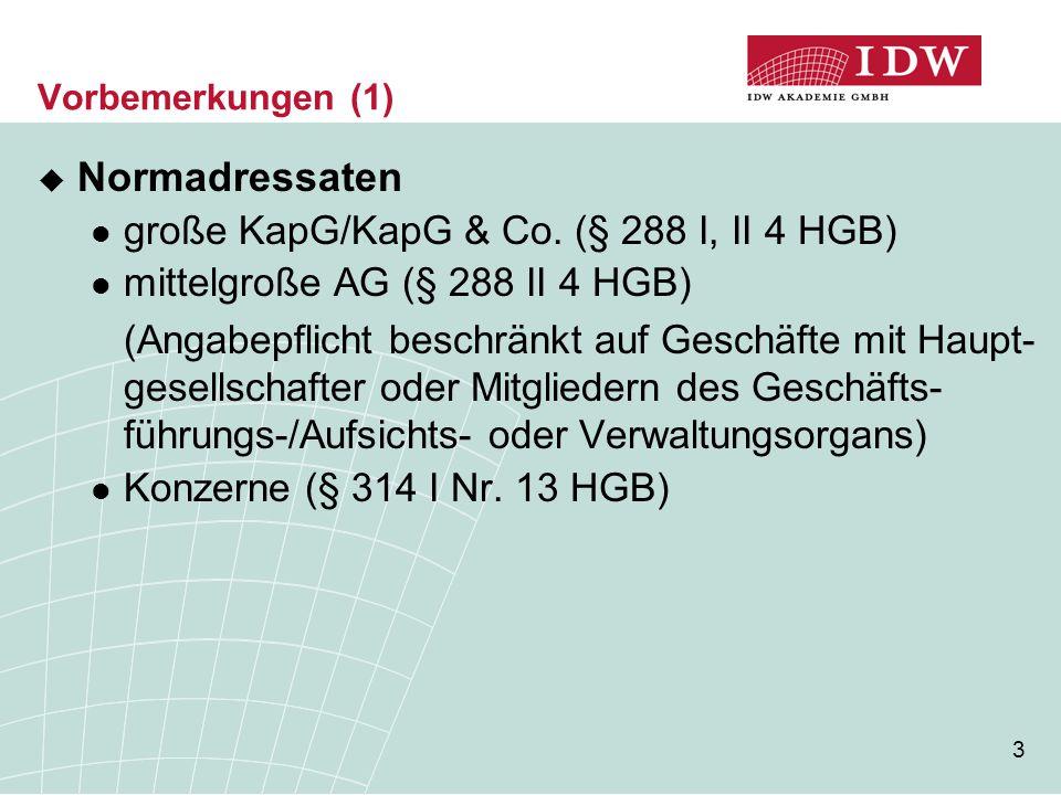 Normadressaten große KapG/KapG & Co. (§ 288 I, II 4 HGB)