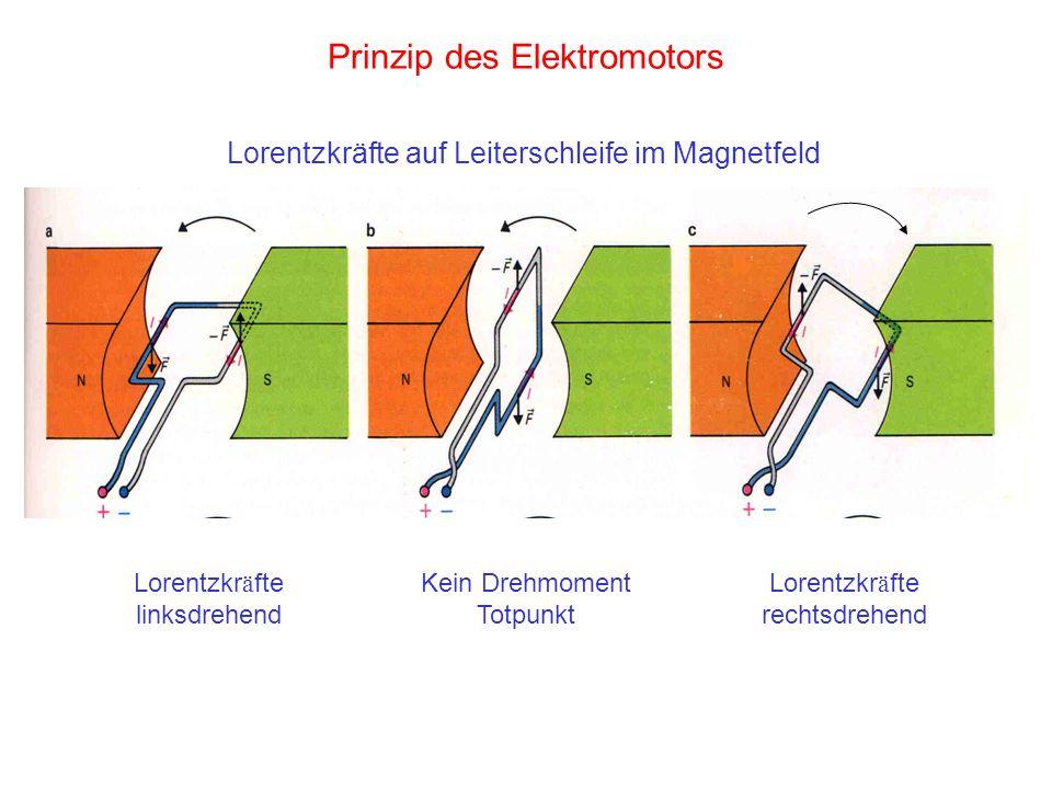 Prinzip des Elektromotors